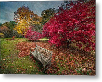 Autumn In The Park Metal Print by Adrian Evans