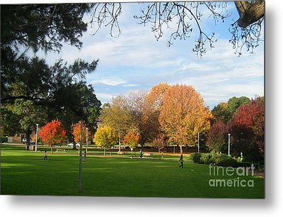 Metal Print featuring the photograph Autumn In The Park by Leanne Seymour