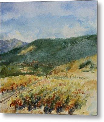 Harvest Time In Napa Valley Metal Print