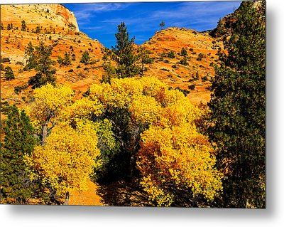Autumn In Zion Metal Print by Greg Norrell