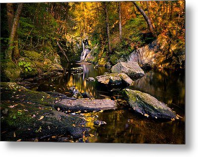 Autumn Is Calling Metal Print by Craig Szymanski