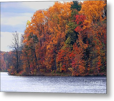Autumn Is Upon Us Metal Print by Gena Weiser