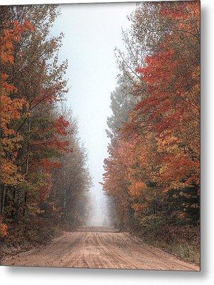 Autumn Journey Metal Print