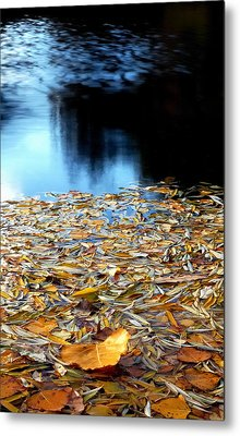 Autumn Lake Metal Print by Steven Milner