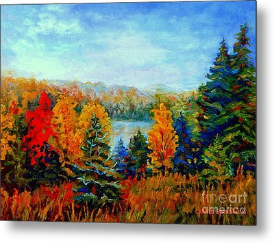 Autumn Landscape Quebec Red Maples And Blue Spruce Trees Metal Print by Carole Spandau