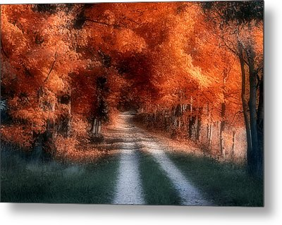 Autumn Lane Metal Print by Tom Mc Nemar