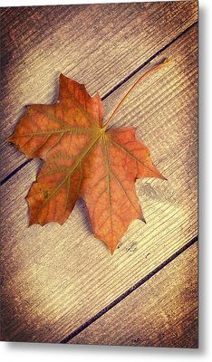Autumn Leaf Metal Print by Amanda Elwell
