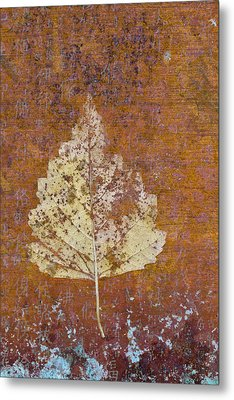 Autumn Leaf On Copper Metal Print by Carol Leigh