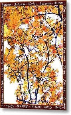 Autumn Leaves 4 Metal Print