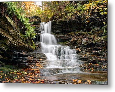 Autumn Leaves Below The Nameless Hidden Waterfall Metal Print