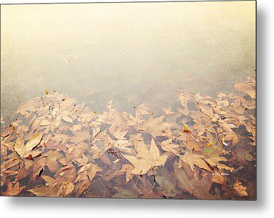 Autumn Leaves Floating In The Fog Metal Print by Angela A Stanton