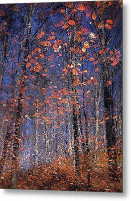 Autumn Leaves Metal Print by Florentin Vinogradof