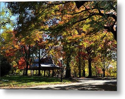 Autumn Leaves In Prospect Park Metal Print