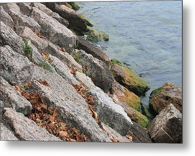 Metal Print featuring the photograph Autumn Leaves Lake Garda Italy by Jean Walker