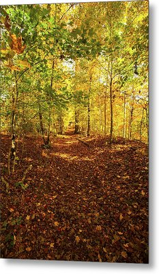 Autumn Leaves Pathway  Metal Print