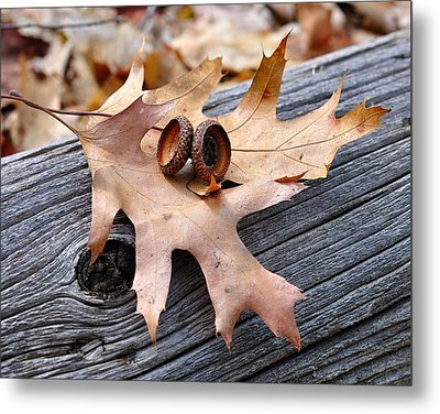 Autumn Leaves With Acorn Caps 003 Metal Print