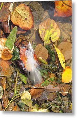 Metal Print featuring the photograph Autumn Leavings by Ann Horn