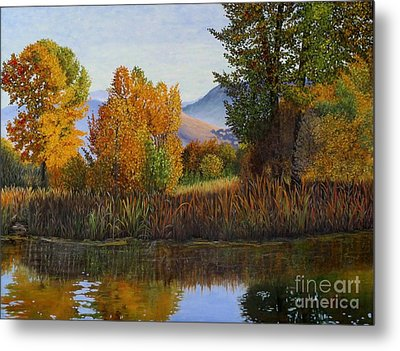 Autumn Light Metal Print by Beverly Theriault