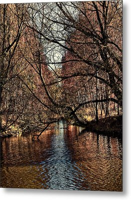 Autumn Light By Leif Sohlman Metal Print
