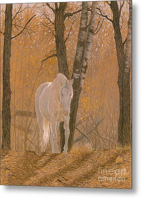 Autumn Magic Metal Print by Laura Klassen