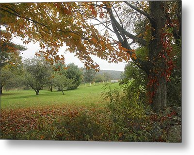 Autumn Meadow Metal Print by Jim Gillen