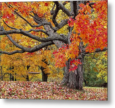 Autumn Memories Metal Print by Alan L Graham