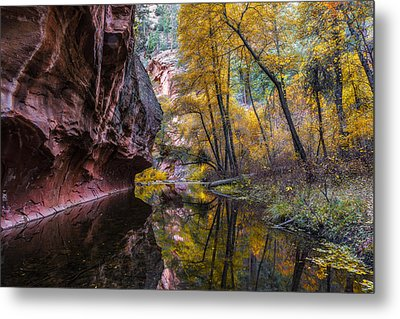 Autumn Mirror Metal Print by Guy Schmickle