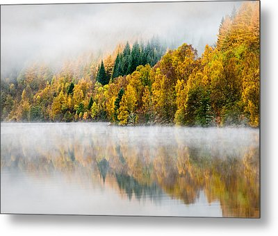 Autumn Mist Metal Print by Dave Bowman