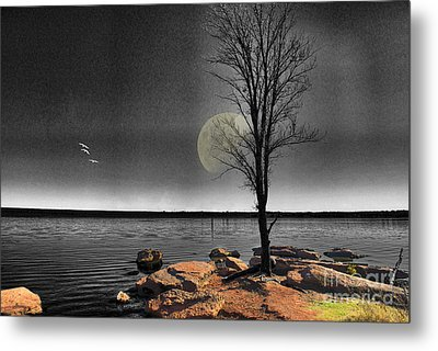 Autumn Moon Metal Print by Betty LaRue
