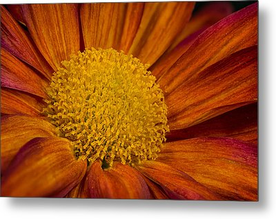 Autumn Mum Metal Print