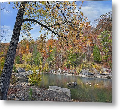 Autumn Oak And Hickory Forest Metal Print by Tim Fitzharris