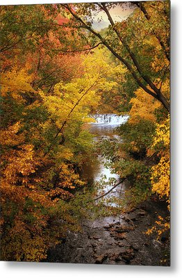 Metal Print featuring the photograph Autumn On Display by Jessica Jenney