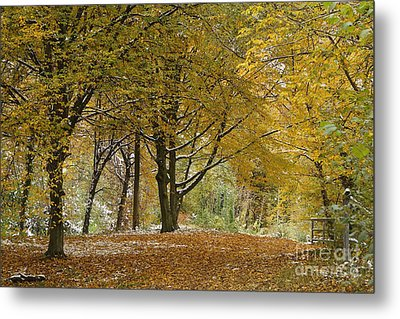 Metal Print featuring the photograph autumn on Moenchsberg in Salzburg by Rudi Prott