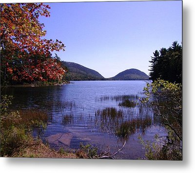 Autumn On Mt. Desert Island Metal Print