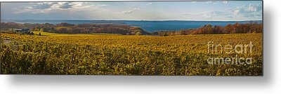Autumn On Old Mission Peninsula Panoramic Metal Print