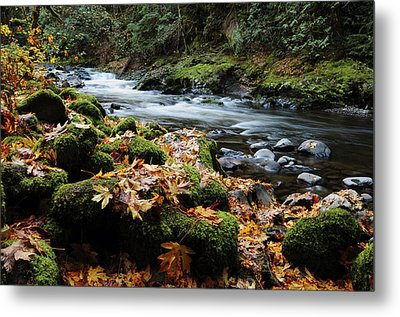 Autumn On The Salmon River, Welches Metal Print by Michel Hersen