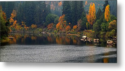Metal Print featuring the photograph Autumn On The Umpqua by Suzy Piatt