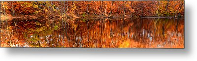 Autumn Paradise Metal Print