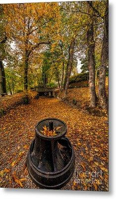 Autumn Park Metal Print by Adrian Evans