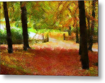 Autumn Park With Trees Of Beech Metal Print