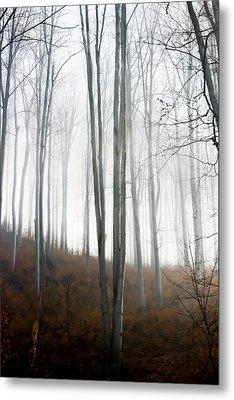 Autumn Pastel Metal Print by Ioana Todor