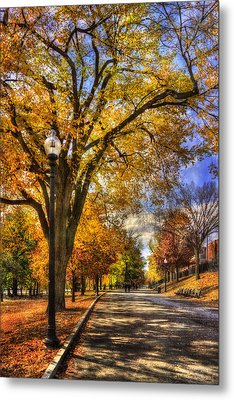 Autumn Path - Boston Public Garden Metal Print by Joann Vitali