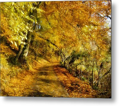 Autumn Path Metal Print by Dale Jackson