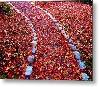 Metal Print featuring the photograph Autumn Path by Julia Ivanovna Willhite