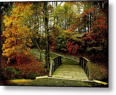 Metal Print featuring the photograph Autumn Peace by James C Thomas