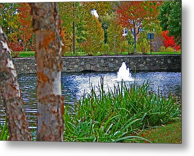 Metal Print featuring the photograph Autumn Pond Another View by Andy Lawless