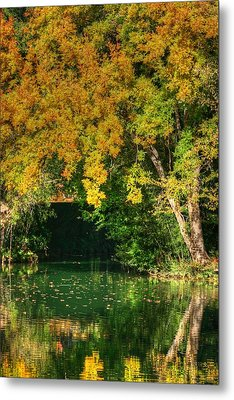 Autumn Pond Metal Print by Ester  Rogers