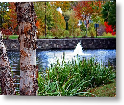 Metal Print featuring the photograph Autumn Pond by Andy Lawless