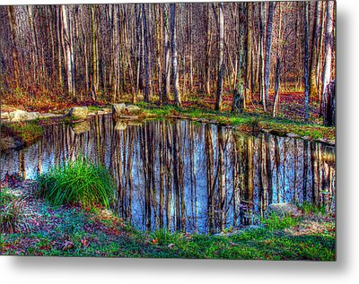 Autumn Pond Reflections Metal Print