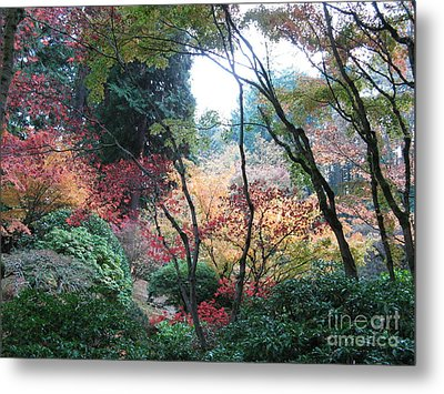 Autumn Portland  Metal Print by Marlene Rose Besso